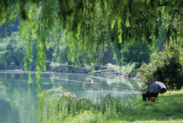 Pêche sur les berges du Tarn